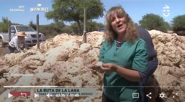 "Sabingo mostró el proyecto de Ovisnova ""La Ruta de la Lana"" en la Región de O'Higgins"